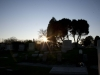 wide-view-sun-low-on-horizon-mount-carmel-cemetery
